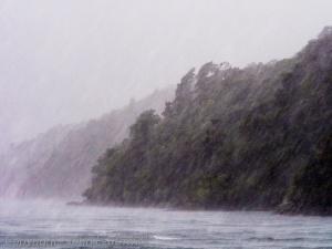 A Fiordland Rainstorm