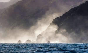 Fiorldand Coast I