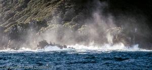 Fiordland Coast II