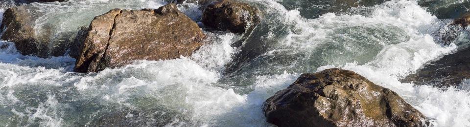 Karangahake Gorge III