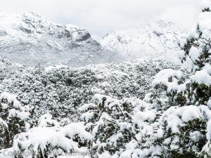 Mount Xenicus