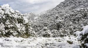 Snow at Fenella Hut